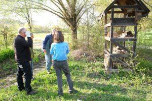 Abbau des alten Wildbienenhaus